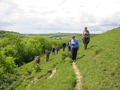 Group of people on a guided walk on Giant Hill