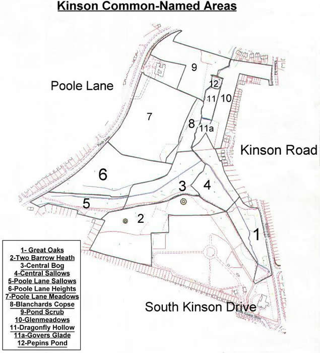 Line drawing map of Kinson Common