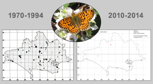 Maps showing where the Small pearl-bordered Fritillary used to be found, and where it is found now