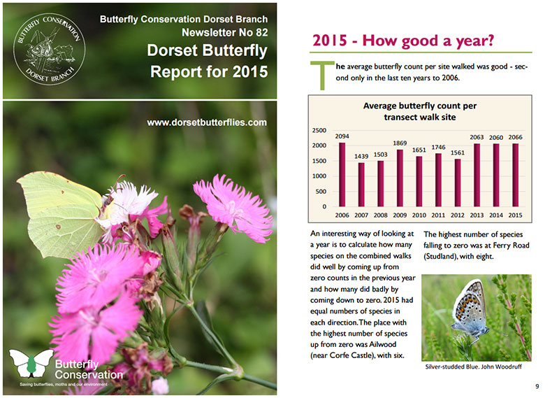 Butterfly Report 2015